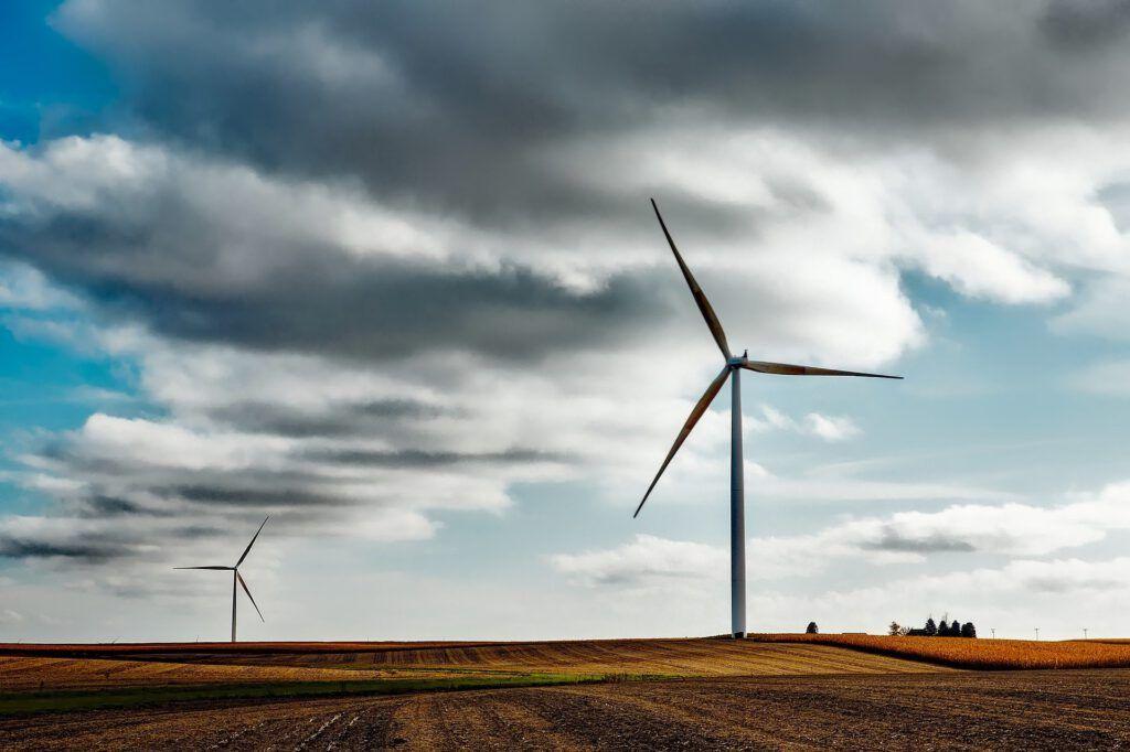 En Star Holding apostamos por las energías renovables y por los productos ecológicos.