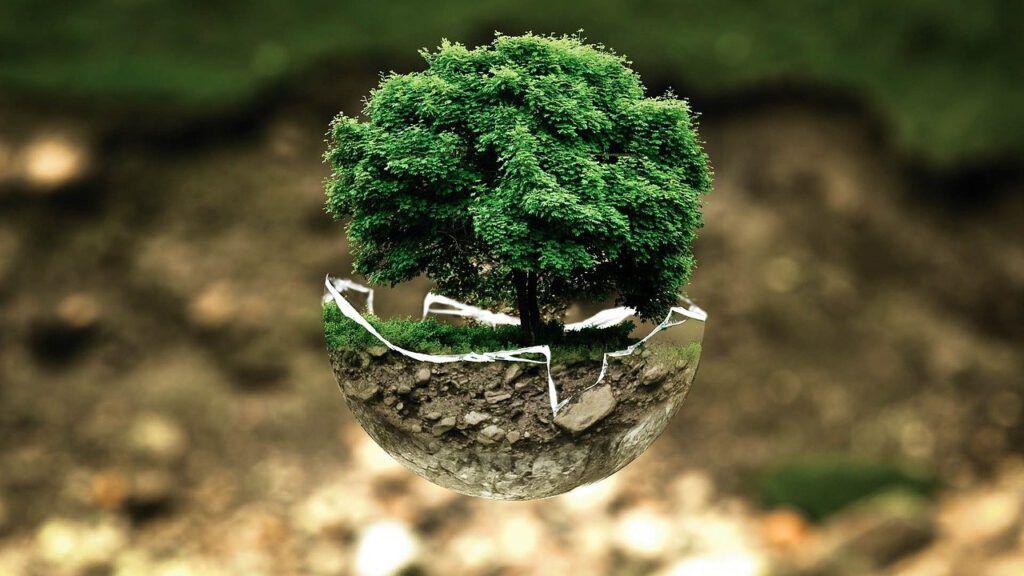 Si quieres saber que es un producto ecológico, visita nuestra web y averígualo todo sobre ellos.