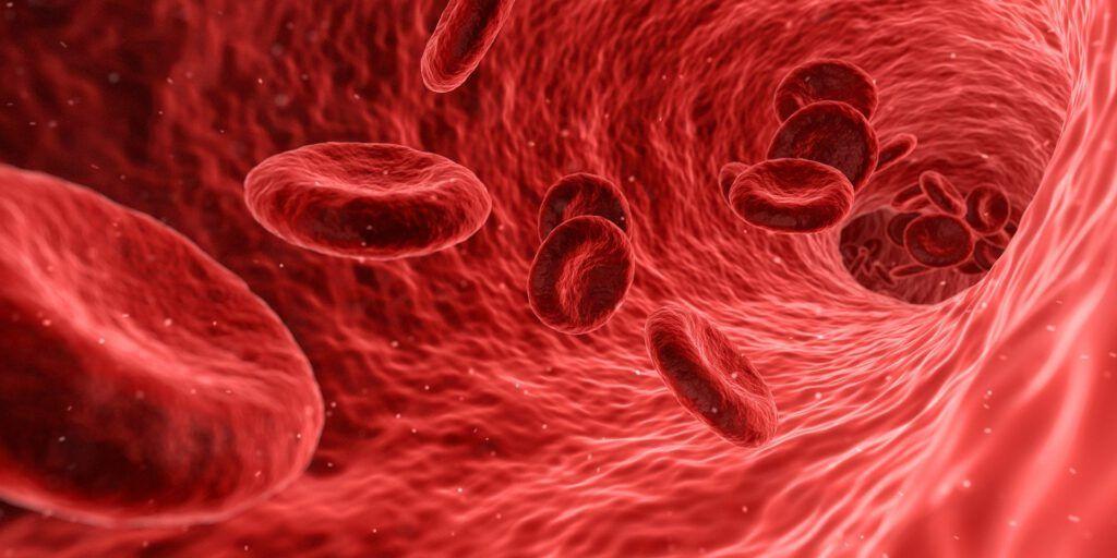 El proceso de la ósmosis también tiene lugar dentro de nuestro cuerpo. Si quieres saber cual es su importancia no dudes en entrar en nuestro blog.
